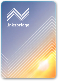Linksbridge_CaseStudy